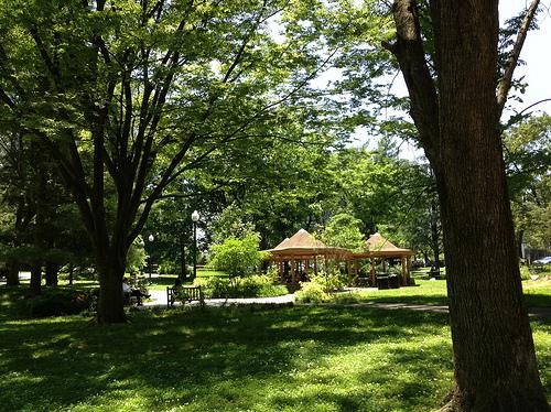 KBchevychasepark500w