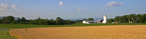 farmview500w